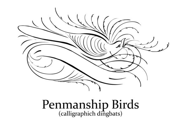 Print on Demand: Penmanship Birds Dingbats Font By Intellecta Design - Image 6