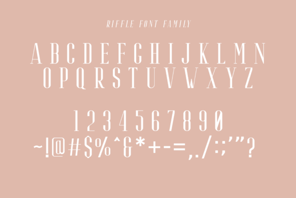 Print on Demand: Riffle Serif Font By craftsupplyco - Image 7