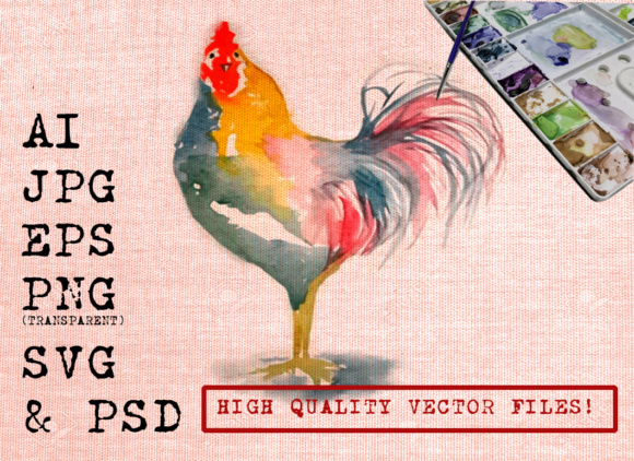 Roosters Watercolors Graphic Illustrations By Ambar Art