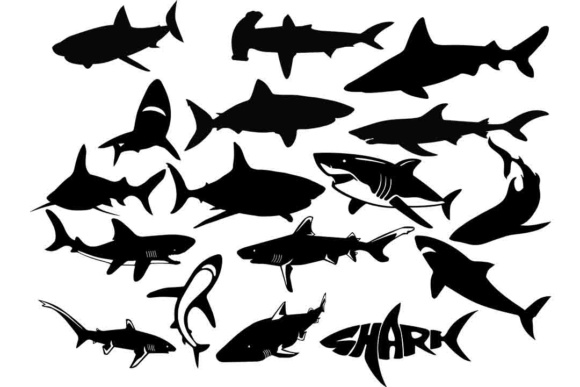 Print on Demand: Shark Silhouette SVG Files Graphic Illustrations By retrowalldecor
