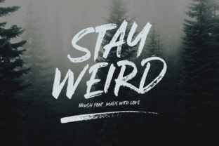 Stay Weird Display Font By Sameeh Media