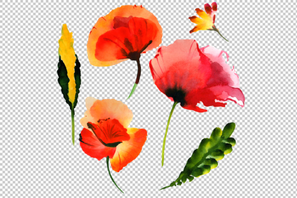 Summer Colorful Poppy Flower PNG Watercolor Set Graphic By MyStocks Image 2