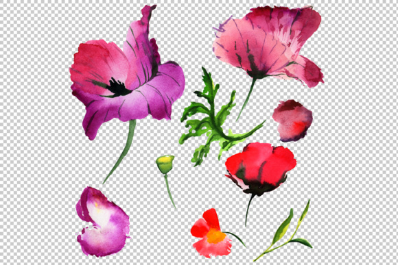 Summer Colorful Poppy Flower PNG Watercolor Set Graphic By MyStocks Image 3
