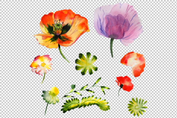 Summer Colorful Poppy Flower PNG Watercolor Set Graphic By MyStocks Image 4
