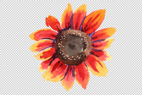 Print on Demand: Sunflower Red Flower Watercolor Set Graphic Illustrations By MyStocks