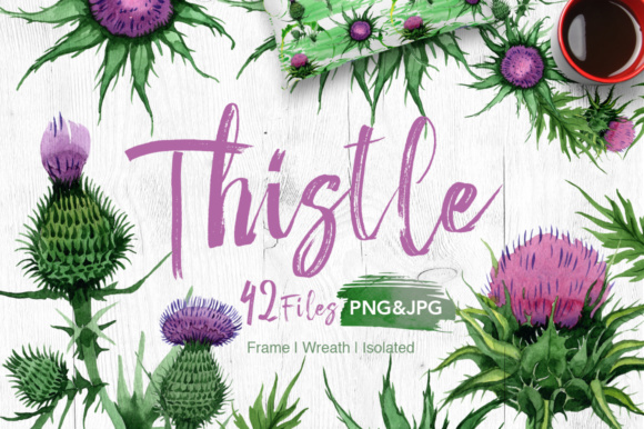 Print on Demand: Thistle Flowers Watercolor Set Graphic Illustrations By MyStocks