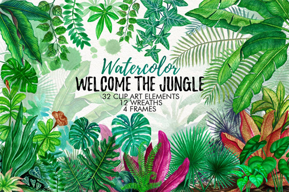 Tropical Leaves in the Jungle Graphic Illustrations By Graphobia