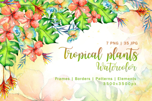 Tropical Plant PNG Watercolor Set Graphic By MyStocks Image 1
