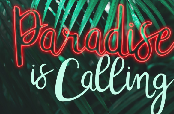 Tropicalling Font By Christine Teixeira Image 4