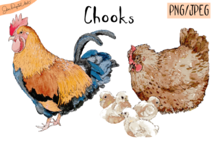 Watercolor Chooks Graphic By Jen Digital Art