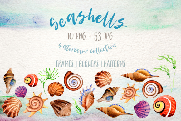 Print on Demand: Watercolor Summer Beach Seashell PNG Set Graphic Illustrations By MyStocks