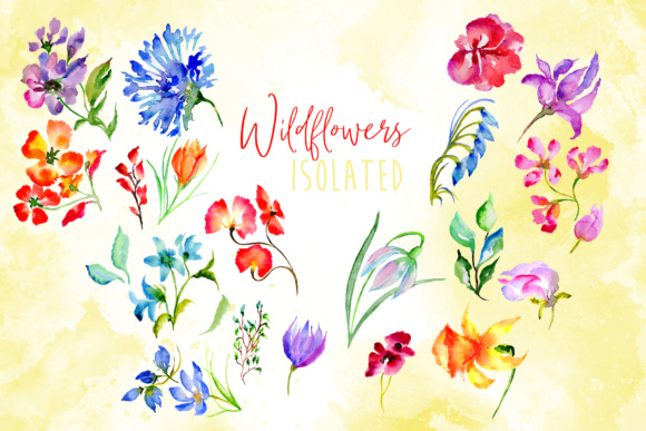 Print on Demand: Wildflowers Watercolor PNG Set Graphic Illustrations By MyStocks - Image 8