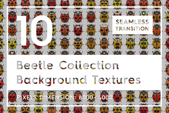 10 Beetle Collection Backgrounds Graphic Backgrounds By Textures