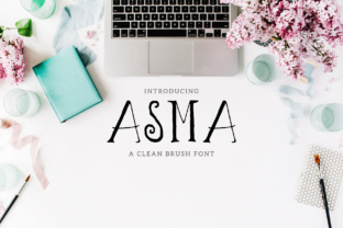 Asma Family Script & Handwritten Font By Creative Tacos