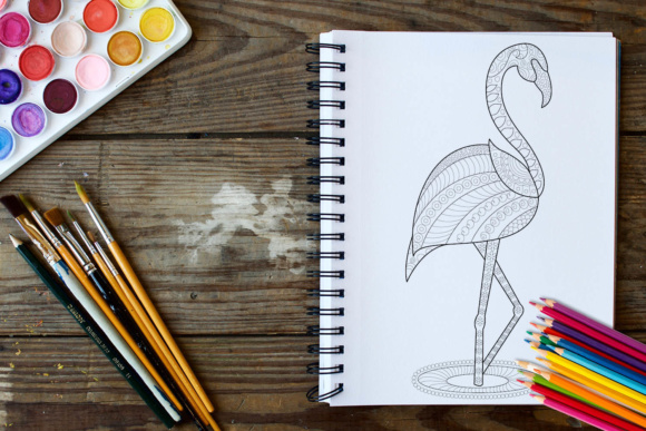 Birds Coloring Book - 30 Unique Birds Designs Graphic Coloring Pages & Books Adults By ColoringBooks101 - Image 3