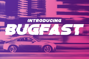 Bugfast Display Font By Chequered Ink