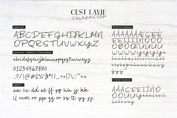 Print on Demand: Cest Lavie Duo Serif Font By Adam Fathony - Image 5