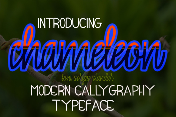 Print on Demand: Chameleon Script & Handwritten Font By maydhen studio