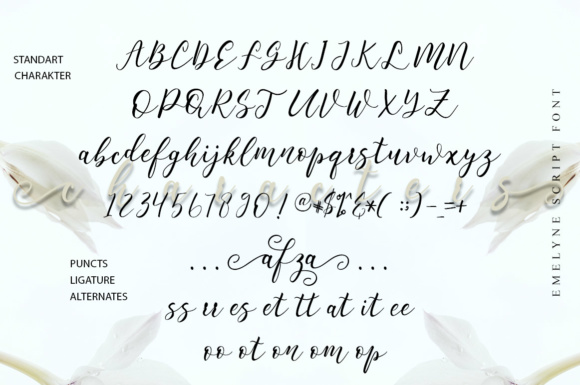 Print on Demand: Emelyne Script Script & Handwritten Font By delishadesign.font - Image 8