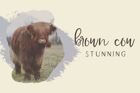 Farmhouse Country Font Image
