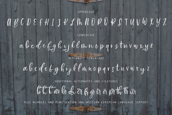 Print on Demand: Farmhouse Country Script & Handwritten Font By BeckMcCormick - Image 10