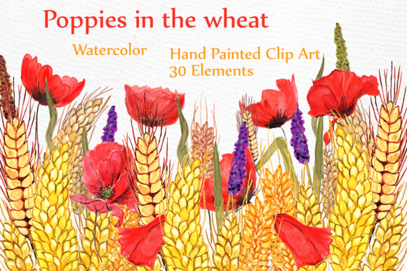 Floral Watercolor Clipart Graphic Illustrations By LeCoqDesign
