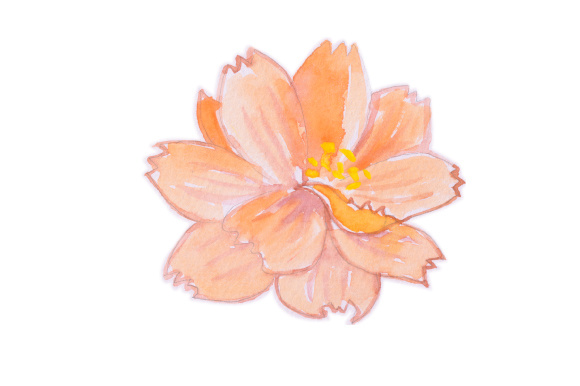 Download Free Pink Orange Flower Svg Cut File By Creative Fabrica Crafts for Cricut Explore, Silhouette and other cutting machines.