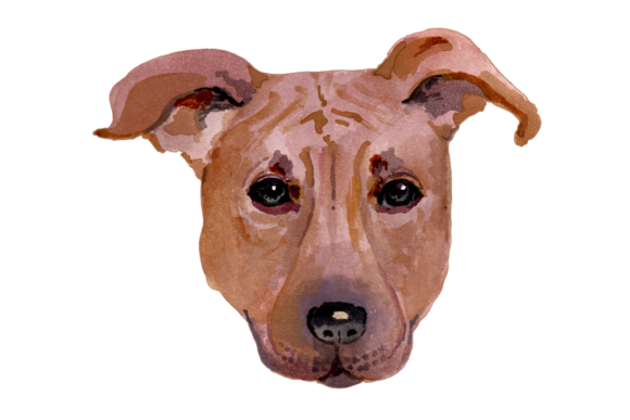 Hand Painted Watercolor Dogs Graphic Illustrations By Jen Digital Art - Image 7