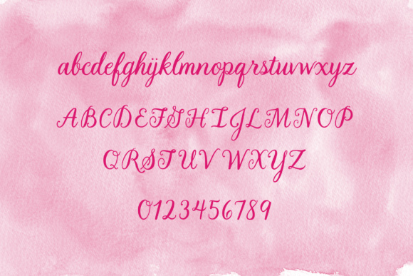 LBPie Font By Laura Bolter Design Image 3