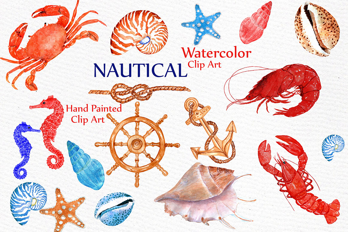 Watercolor beach. Nautical clipart animals crabs