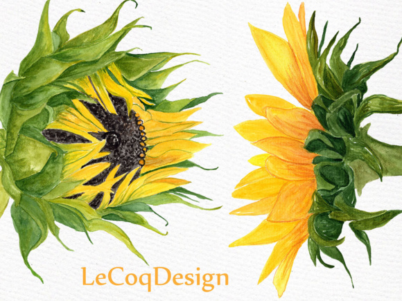 Sunflower Watercolor Clipart SUNFLOWER CLIP ART Wedding Clipart Floral Clipart Separate Flowers Diy Wedding Graphic Illustrations By LeCoqDesign - Image 4