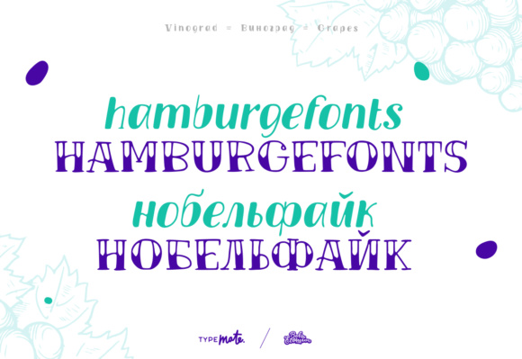 Print on Demand: Vinograd Display Font By Creative Fabrica Freebies - Image 3