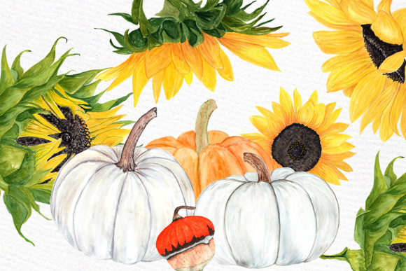 Download Free Watercolor Sunflower Clipart Pumpkin Clipart Sunflower Wedding Yellow Flower Clipart Harvest Clipart Thanksgiving Grafico Por Lecoqdesign Creative Fabrica for Cricut Explore, Silhouette and other cutting machines.
