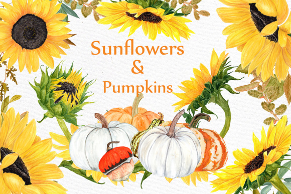 Watercolor Sunflower Clipart Pumpkin Clipart Sunflower Wedding Yellow Flower Clipart Harvest Clipart Thanksgiving Graphic Illustrations By LeCoqDesign