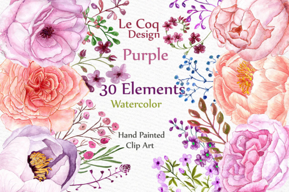 Watercolor Peonies Flowers Clipart Graphic Illustrations By LeCoqDesign