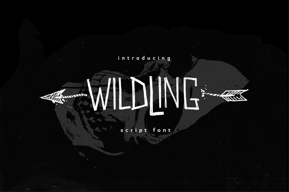 Print on Demand: Wildwildling Script & Handwritten Font By brnk1314 - Image 1