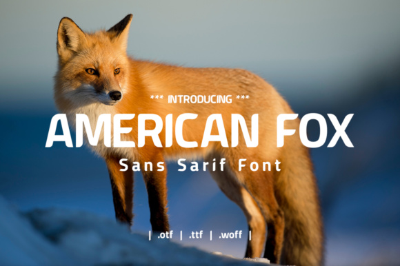 Print on Demand: American Fox Sans Serif Font By yantodesign