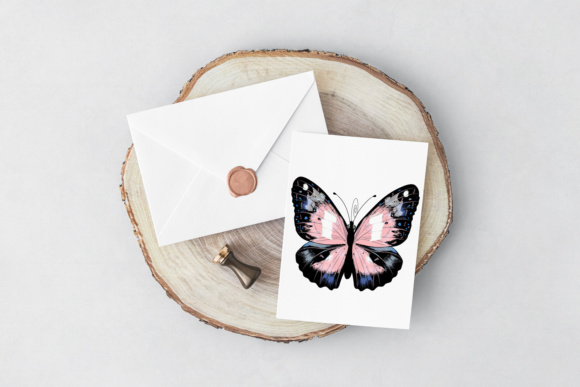Beautiful Collection From12 High Detailed and Quality Butterflies. Graphic Preview