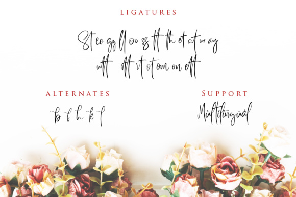 Print on Demand: Better Saturday Script & Handwritten Font By Din Studio - Image 3