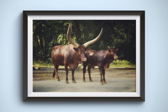 Big Horn Animal Graphic Animals By Kerupukart Production