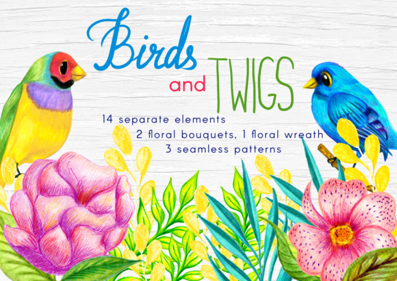 Birds and Twigs Graphic Collection Graphic Illustrations By elenachooart