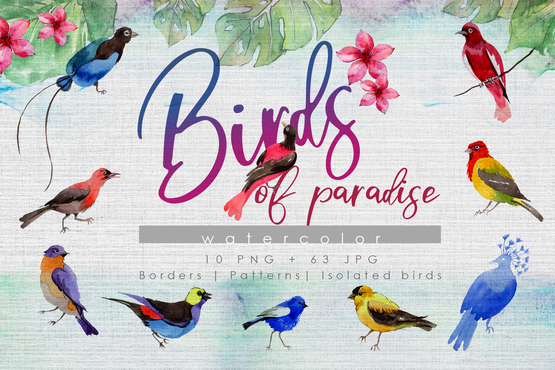 Download Free Birds Of Paradise Watercolor Set Graphic By Mystocks Creative for Cricut Explore, Silhouette and other cutting machines.