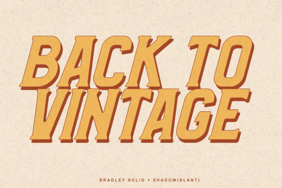 Print on Demand: Bradley Family Display Font By Lettersiro Co. - Image 9
