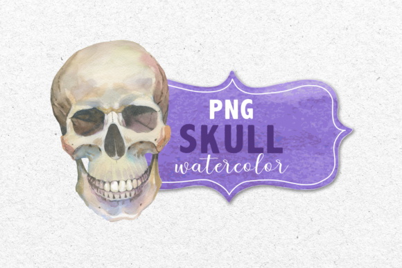 Print on Demand: 23 Watercolor Skull Drawings Set Graphic Illustrations By MyStocks - Image 4
