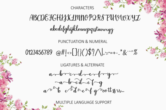 Print on Demand: Daylily Script Script & Handwritten Font By Posts Type - Image 7