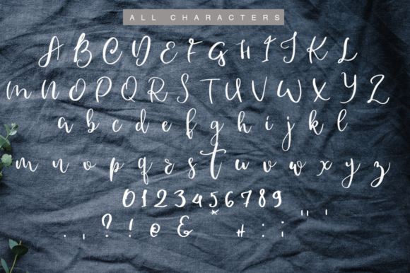 Donnio Font By Katie Holland Image 3