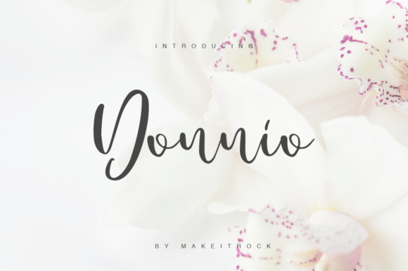 Donnio Font By Katie Holland Image 1