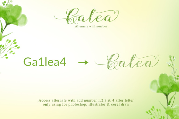 Print on Demand: Galea Script Script & Handwritten Font By Khurasan - Image 7