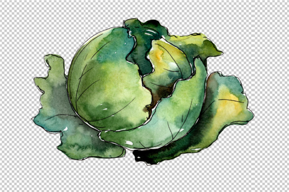 Download Free Green Cabbage Vegetables Watercolor Set Graphic By Mystocks for Cricut Explore, Silhouette and other cutting machines.