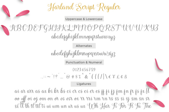 Harland Script Font By Cooldesignlab Image 8